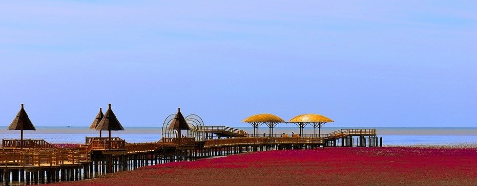 panjin red beach - China