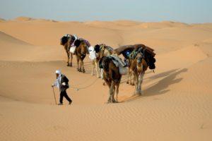 Kurstreckenflüge nach Tunesien