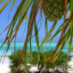 Sansibar - die schönsten Sehenwürdigkeiten, Traumstrände und Hoteltipps