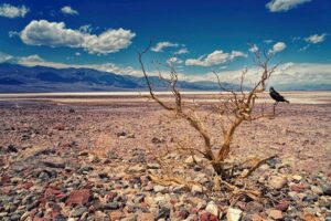 Salzwüste im Death Valley Nationalpark