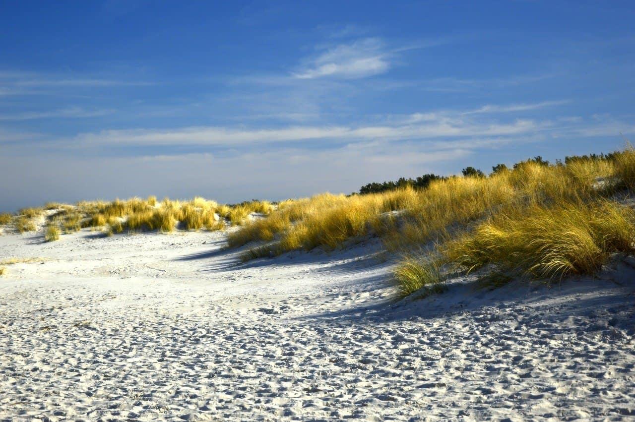 Dünenlandschaft an der Ostseeküste